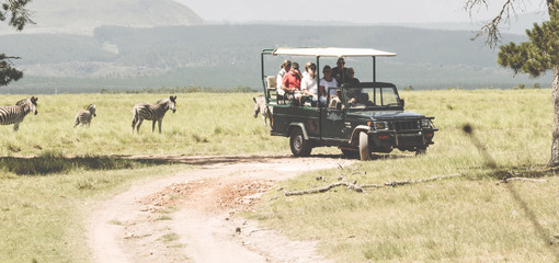 People on Safari