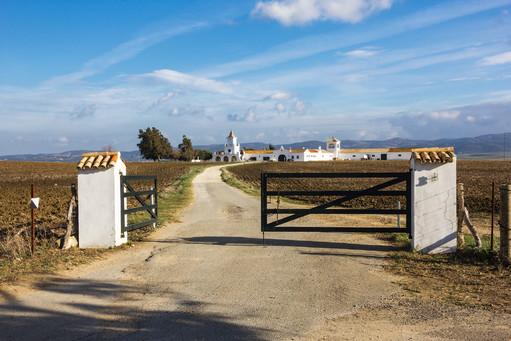 Andalusian Farm, Spain