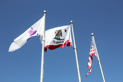 Apple California United States Flags